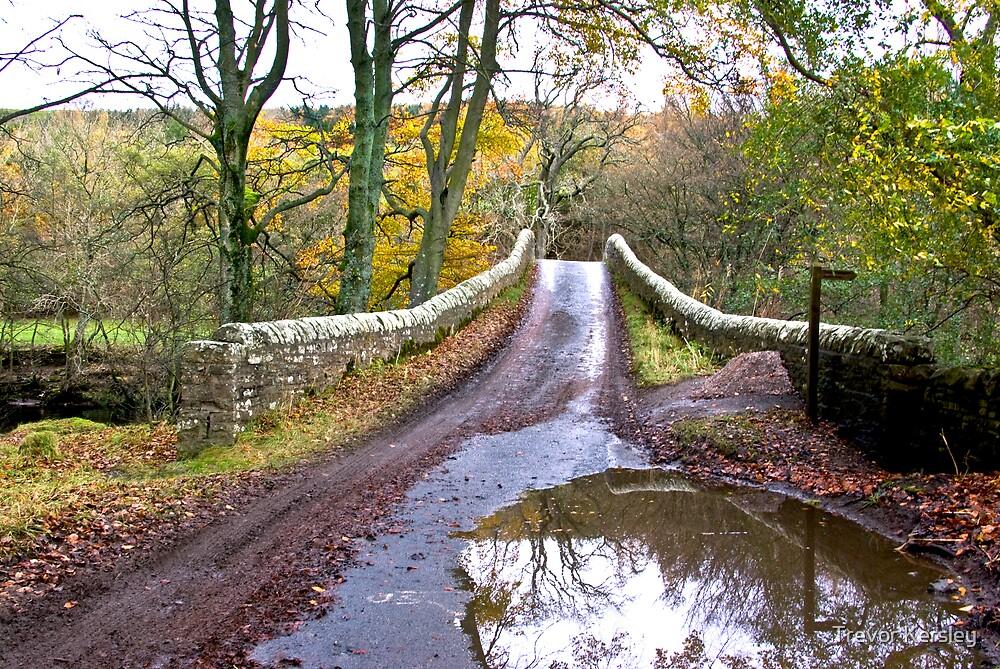 Bridge Approach by Trevor Kersley
