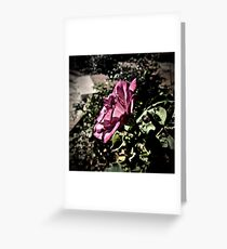 Rose in Profile Greeting Card