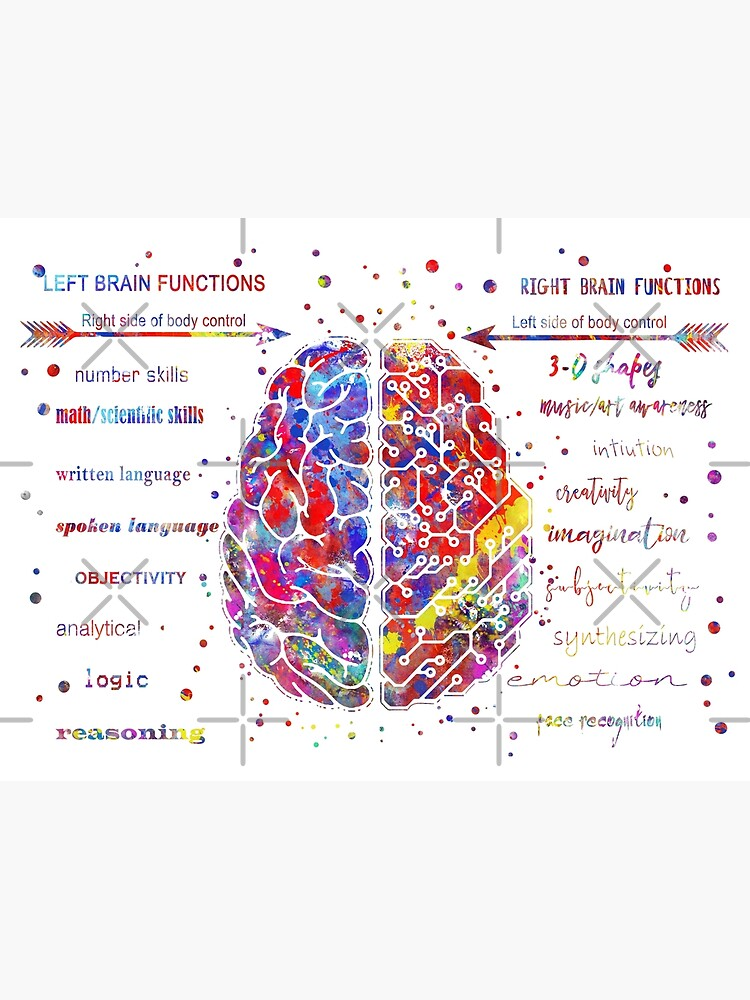 Left and right brain function by Rosaliartbook