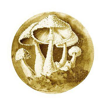 Magic Mushrooms, Liberty Caps, Psilocybe Semilanceata, Mycology, Foraging, Toadstool, Fungus, Shrooms, Botanical Illustration, Woodland Fungi, Fairy Shrooms by earthengoods