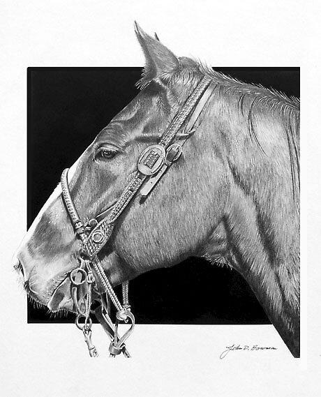 Horse Portrait by J.D. Bowman