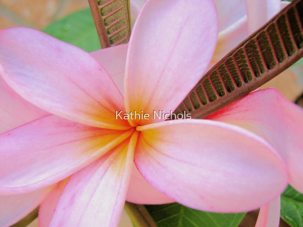 Frangipani Pink by Kathie Nichols