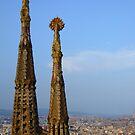 Sagrada Familia Towers (2 of 18) by Themis