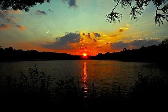 Orange Sun - Aqua Sky by Paul Gitto