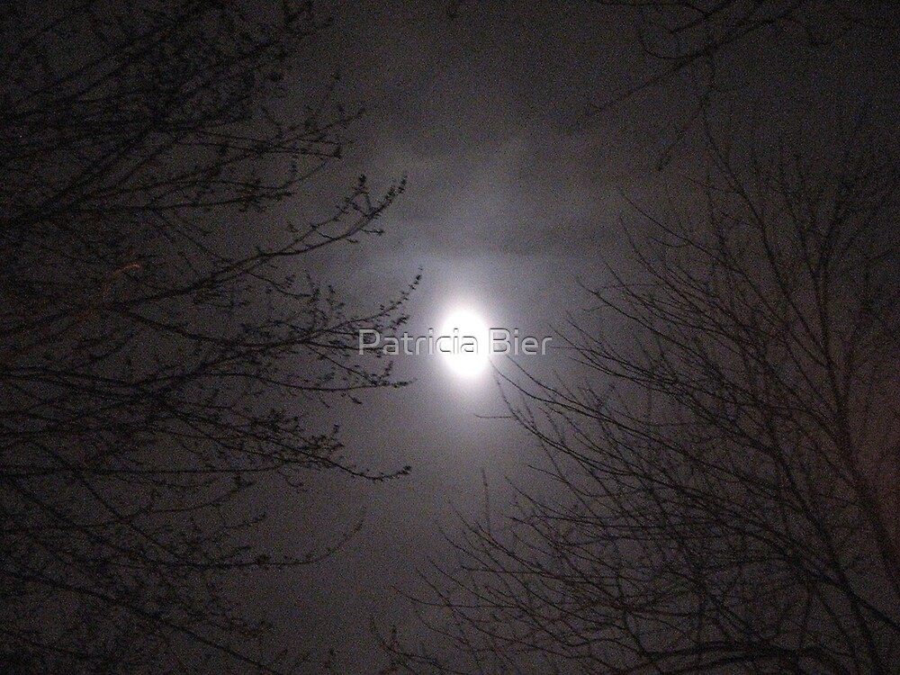Werewolf's moon by Patricia Bier