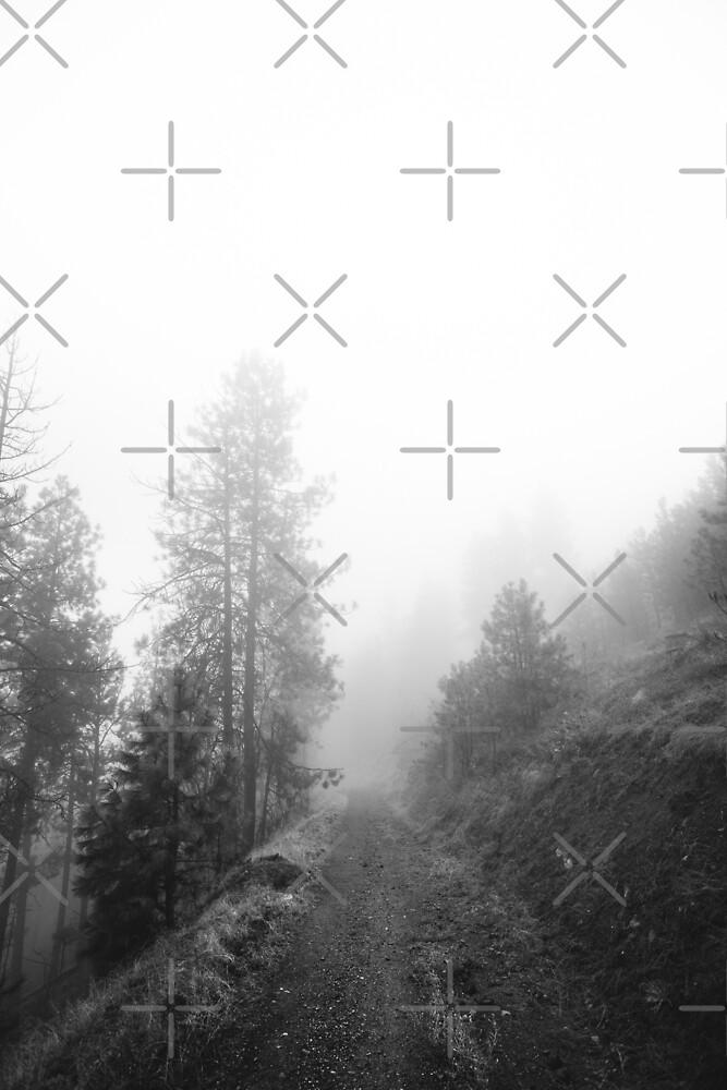 Oktober Nebel von Victoria Avvacumova