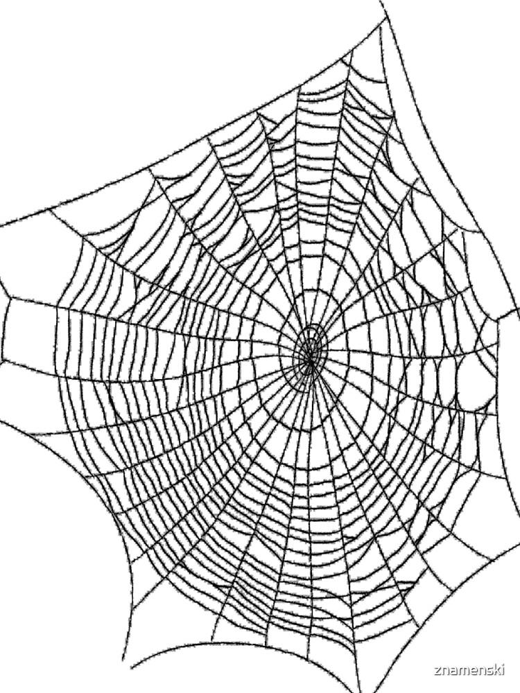 #illustration #chalkout #arachnid #web #pattern #outline #design #vector #webtogether #abstract #art #geometry #sunshade #shape #horizontal #whitecolor #blackandwhite #monochrome #bright #copyspace by znamenski