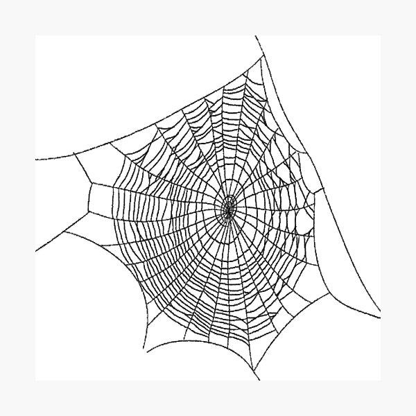 #illustration #chalkout #arachnid #web #pattern #outline #design #vector #webtogether #abstract #art #geometry #sunshade #shape #horizontal #whitecolor #blackandwhite #monochrome #bright #copyspace Photographic Print