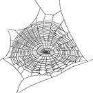 #illustration #chalkout #arachnid #web #pattern #outline #design #vector #webtogether #abstract #art #geometry #sunshade #shape #horizontal #whitecolor #blackandwhite #monochrome #bright #copyspace by znamenski