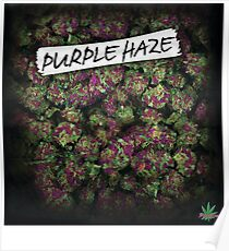 My Kush Weed Purple Haze Cannabis design Floral hemp marijuana Poster