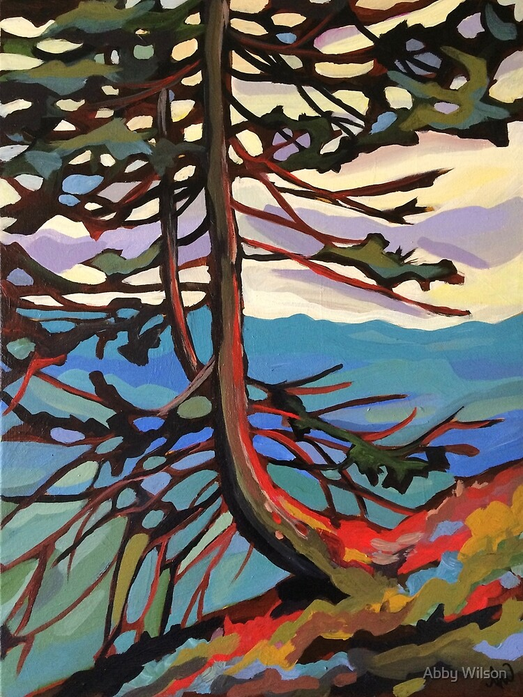 Pine on Mount Roberts by Abby Wilson