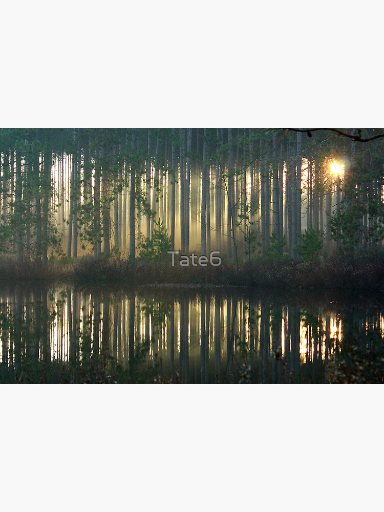 Echo~Totogatic Park, Minong, Wisconsin by Tate6