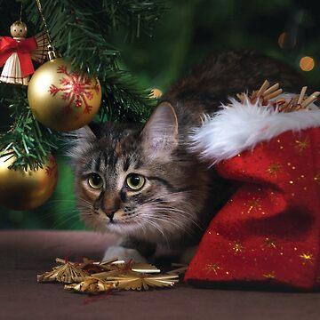 Christmas Cat by DesignsAndStuff