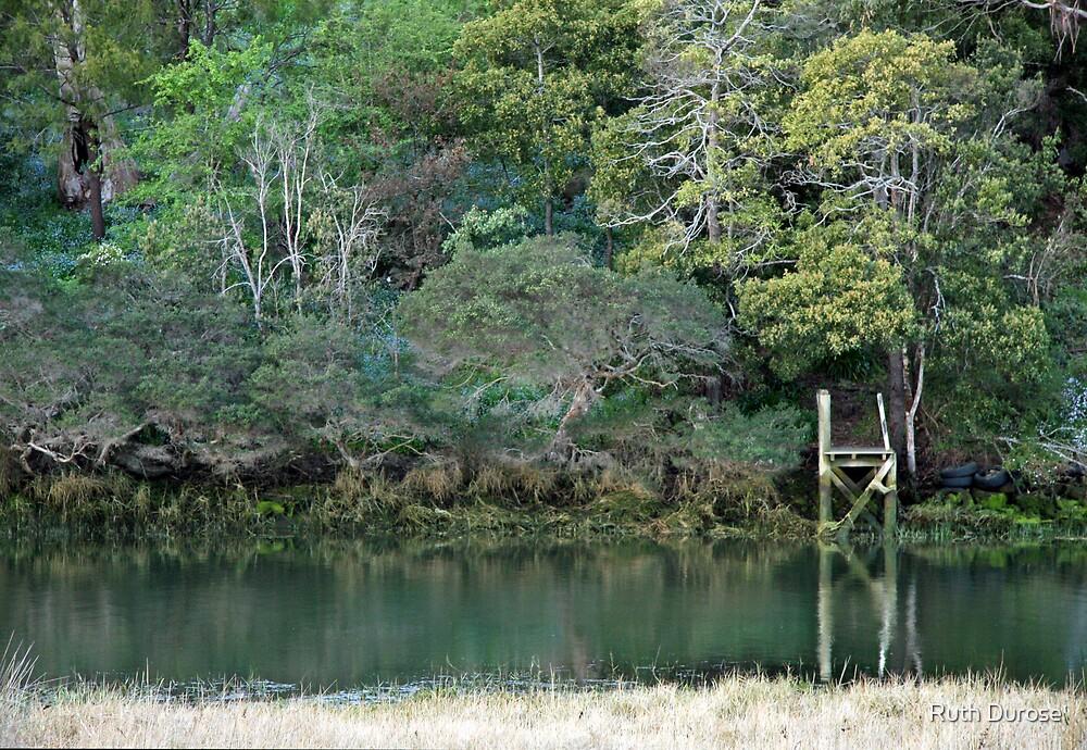 Stoney Creek - Gravelly Beach, Tasmania by Ruth Durose