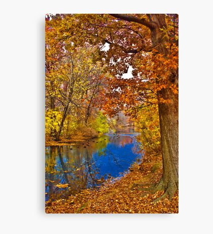 Amazing Fall Canvas Print