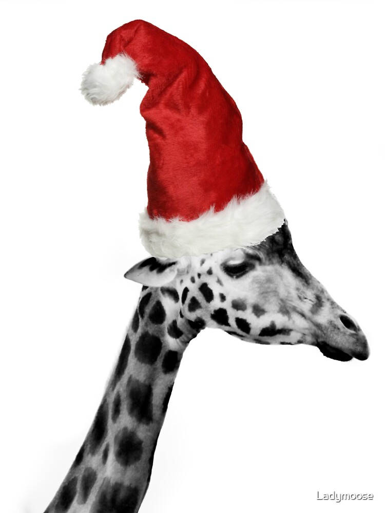 The Elegance of the Christmas Giraffe by Ladymoose