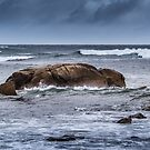 Moody Bay by Rick Playle