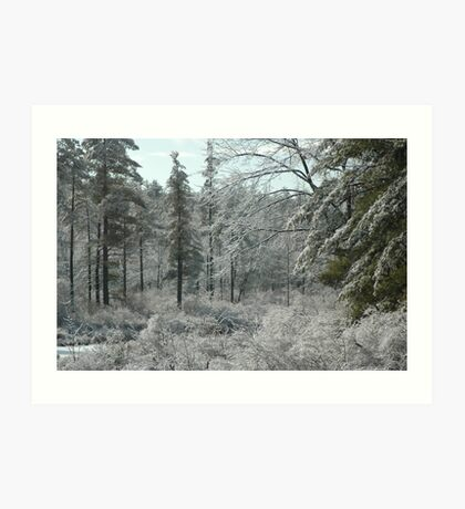 Ice Forest Art Print