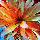 Be My Begonia! by DeerPhotoArts