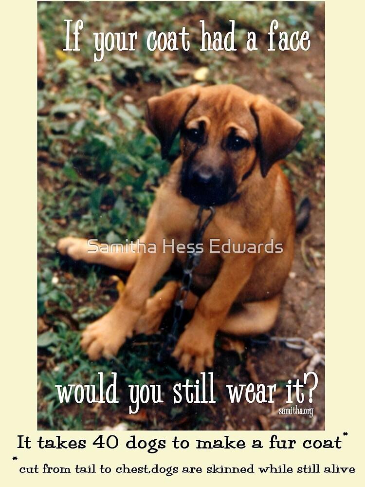 Dog Coat by Samitha Hess Edwards