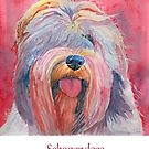 Schapendoes by doggyshop