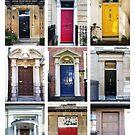 Doors of Bristol by Sue Porter