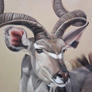 African wildlife series. The kudu by AnetDuToit