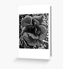 Roses Are Gray Greeting Card