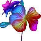 das Leben ist bunt ! - zauberhafte Regenbogen - Blume von rhnaturestyles