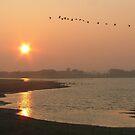 "Sunrise over ""Tureluur"" by Adri  Padmos"