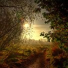 Autumn Mist by doublevision
