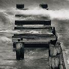 Forgotten Era by Steven  Sandner