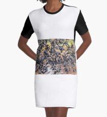 Flock of Seagulls, well, almost Graphic T-Shirt Dress