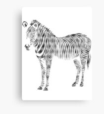 Schurken Panda | Was zum Zebra ?! Leinwanddruck