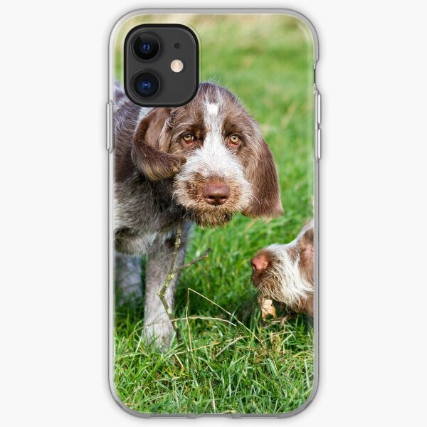 Brown Roan Italian Spinone Puppies Playing iPhone Soft Case