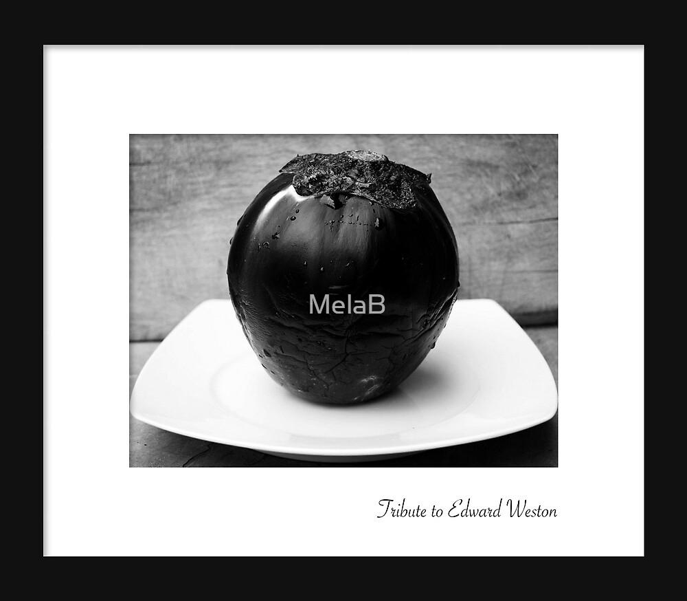 February - Edward Weston by MelaB