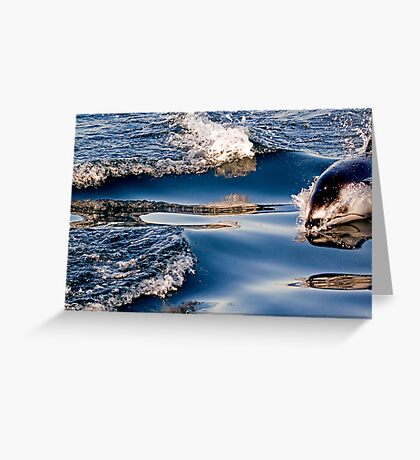 Gliding Through The Water Greeting Card