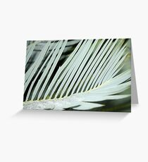 Encephalartos princeps Greeting Card