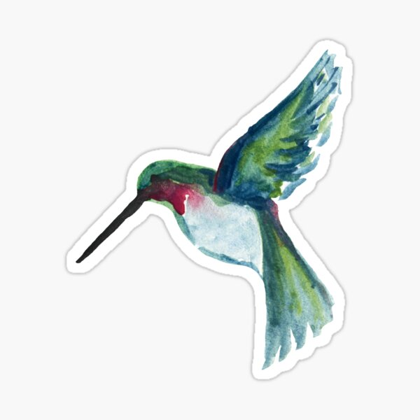watercolor hummingbird Sticker