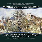 Jasmine Orchard Oolong by NMTeaCo