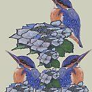 Kingfishers by MagsWilliamson