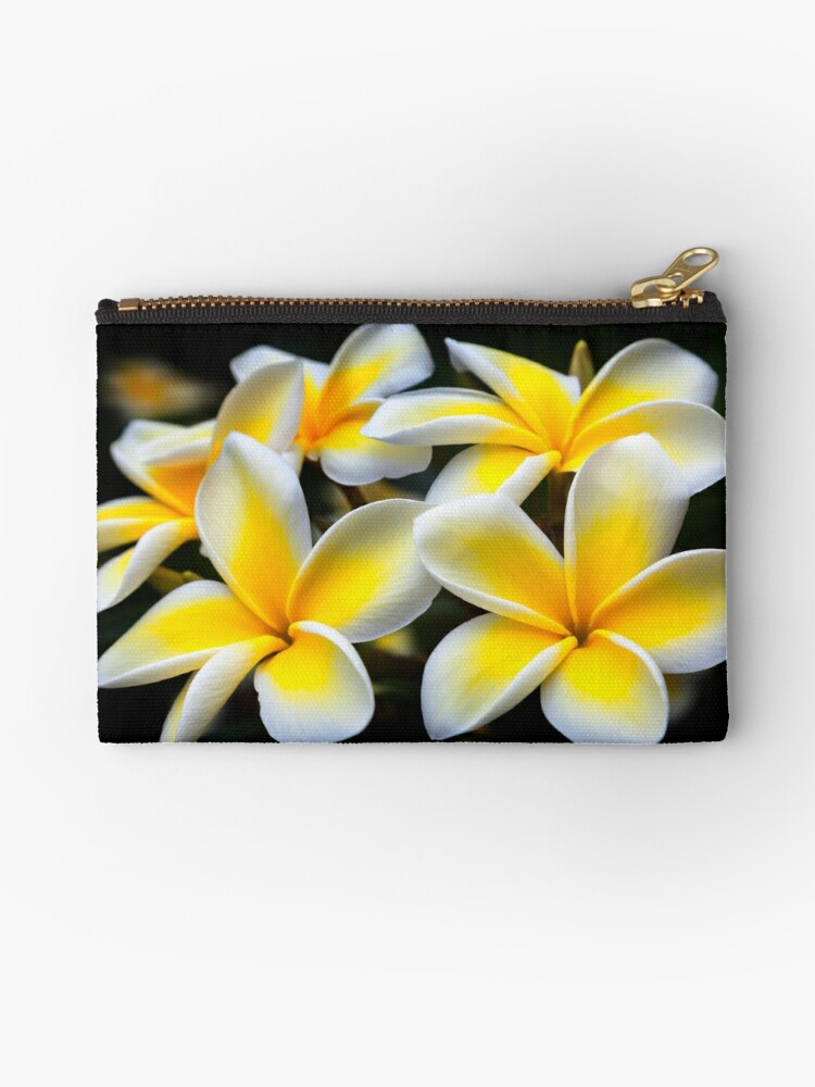 Kauai Plumeria, Plumeria, Hawaiian Gift, Hawaiian Gifts, Hawaii Decor, Plumeria Iphone XS Max Case, Plumeria Throw Pillow, Plumeria Tote Bag,