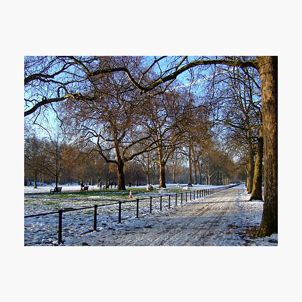 St James's Park, Winter Photographic Print