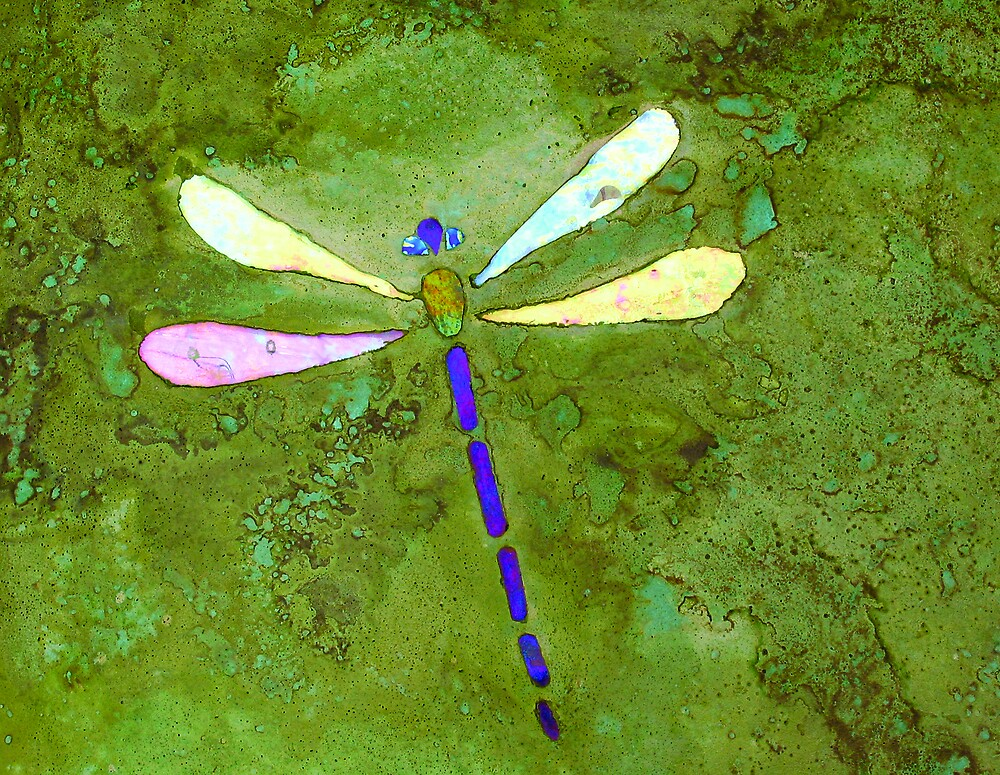 Dragonfly by Leslie Guinan