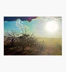 Kenyan Sunset Photographic Print