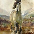 Moorland Pony Connemara by Trudi's Images