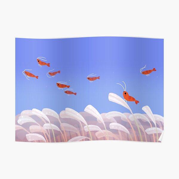 Flying cherry shrimp  Poster