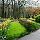 Das Paradies des Fotografen - Keukenhof Gardens von VoxCeleste