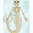 Skeleton Mermaid - MerMonday October 8th 2018 by dreampigment