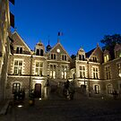 France - Orléans - By night by Thierry Beauvir
